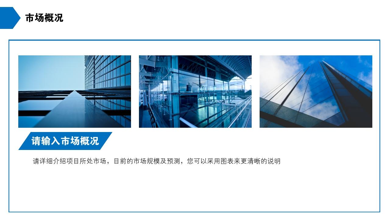 保險公司理財咨詢房地產公司完整商業計劃書PPT模版-市場概況
